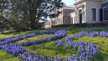 Hortus Botanicus de Leiden y Carolus Clusius. La horticultura con mayúsculas