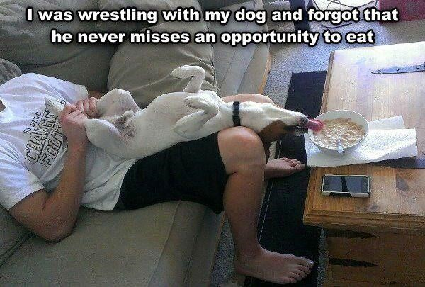 25 Funny Moment Pictures of the Day