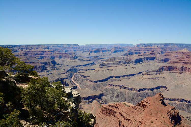 Grand Canyon - South Rim | My Darling Days