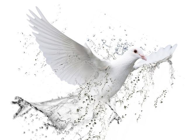 Imagem meramente ilustrativa do Espírito Santo