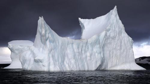 glaciar a la deriva en caleta Potter