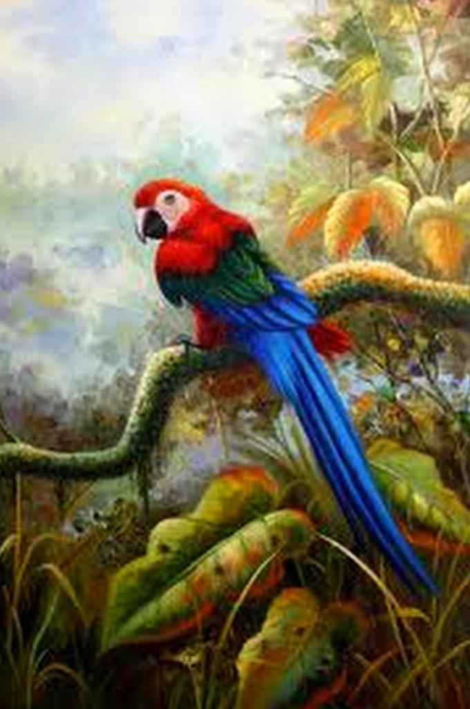 Cuadros Modernos Pinturas y Dibujos : Aves y Pájaros al Óleo