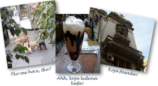 Skies above Belgrade by Laka kuharica: shar-pei puppies, ice coffee, Belgrade old buildings