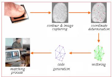 Information Contoh Aplikasi Jst Jaringan Syaraf Tiruan