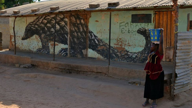 The Gambian village transformed by graffiti