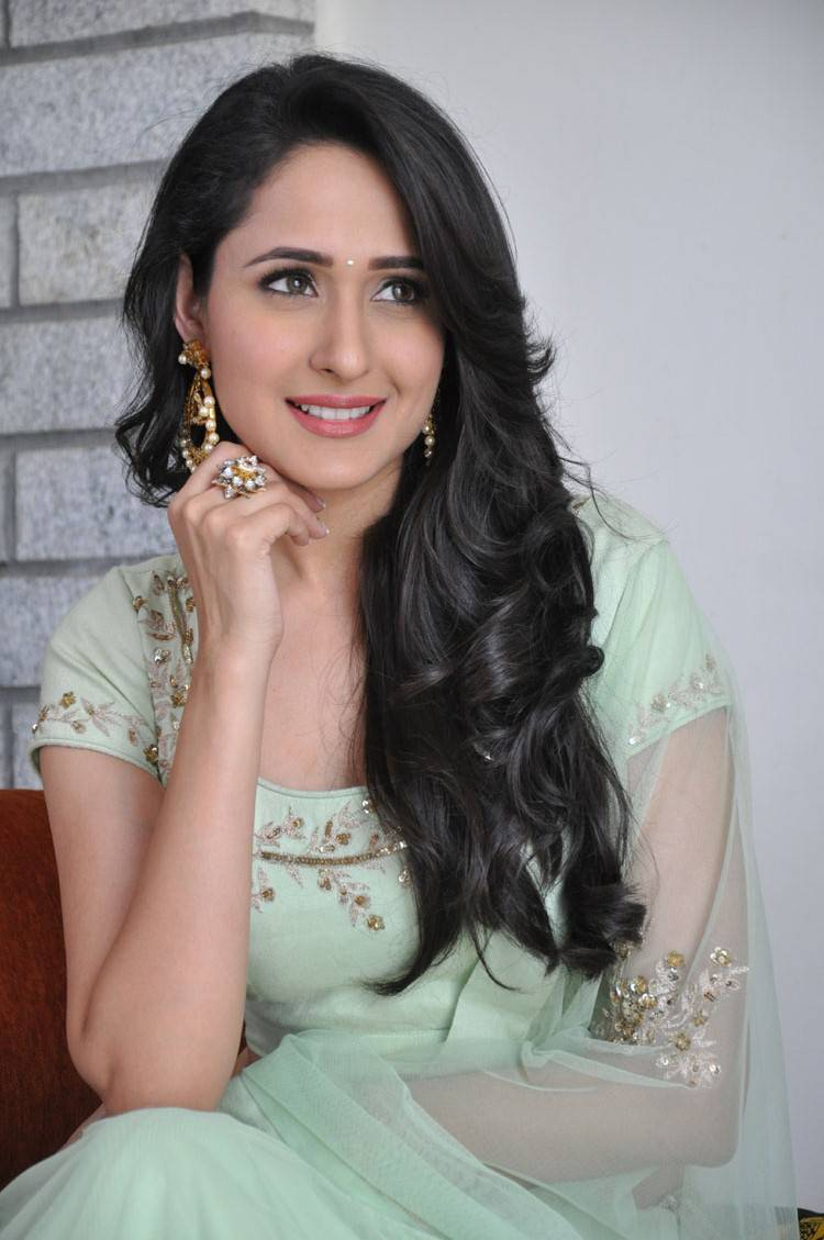 Pragya Jaiswal Stills At Kanche Movie
