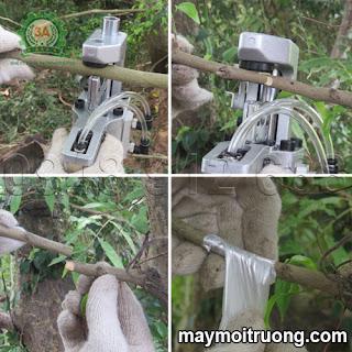 Dụng cụ cắt ghép cành cây