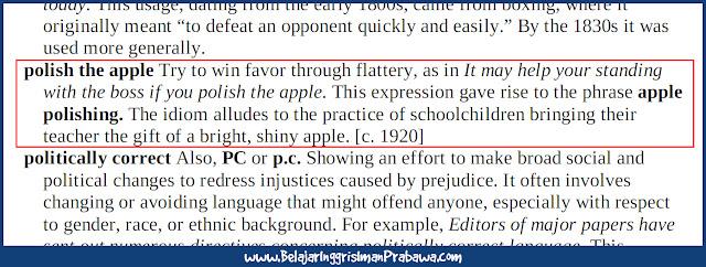 Arti Polish the Apple