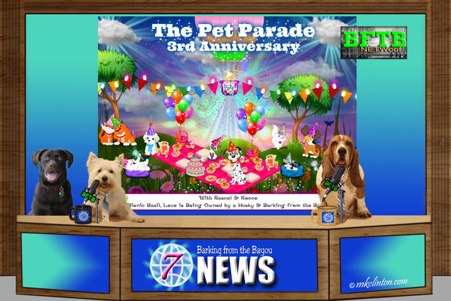 BFTB NETWoof News Pet Parade Anniversary giveaway announcement