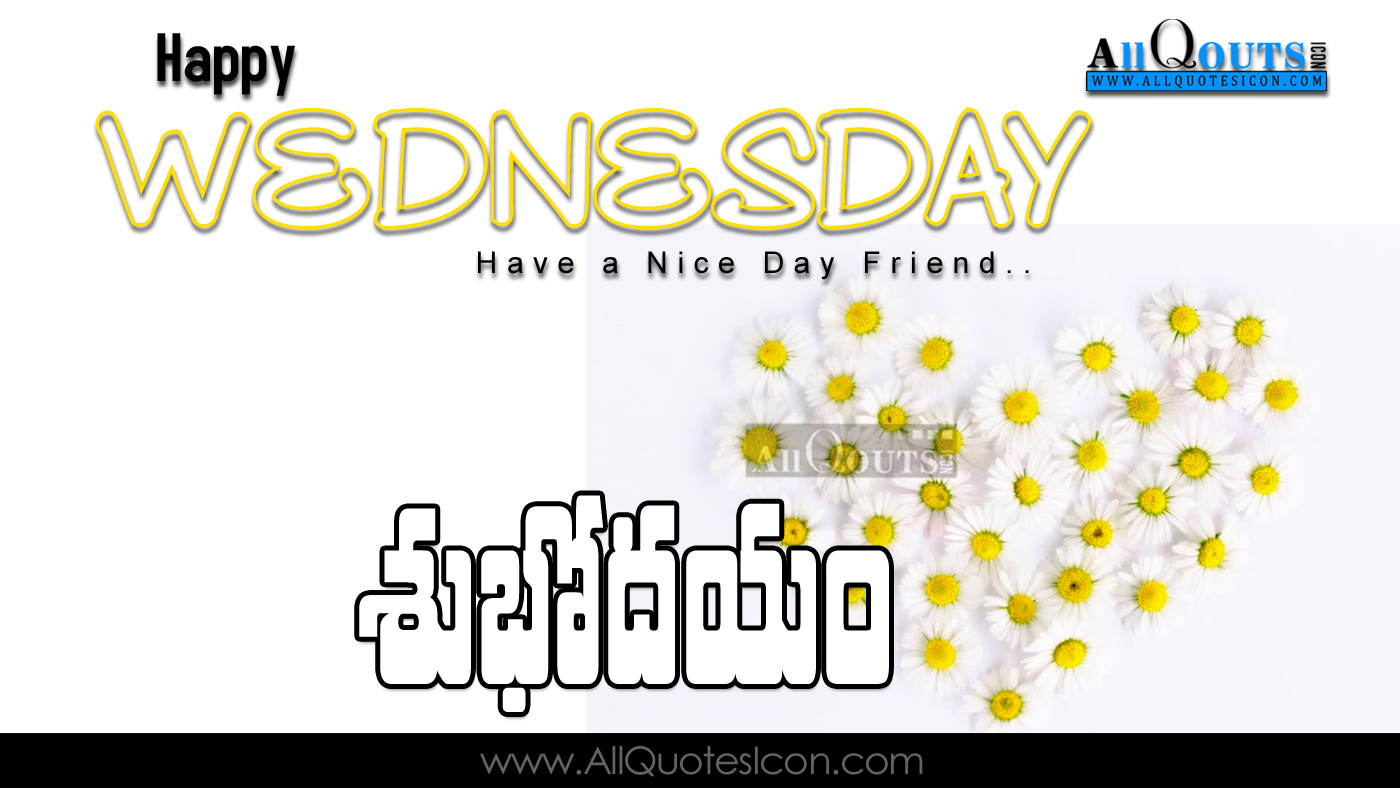 happy wednesday quotes and sayings wallpapers best telugu