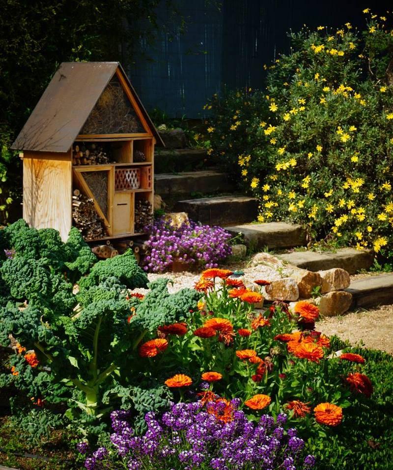flores narajas de caléndulas y casa para insectos