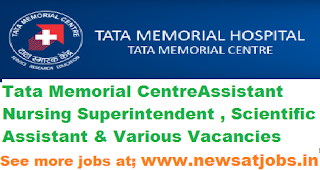 tmc-assistant-Recruitment-2017