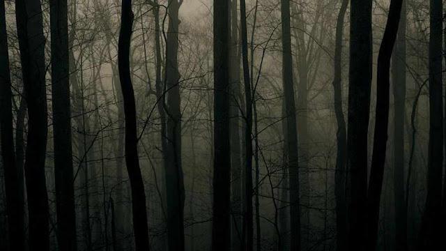 Grandes erros, ou heresias, secam e esterilizam as almas