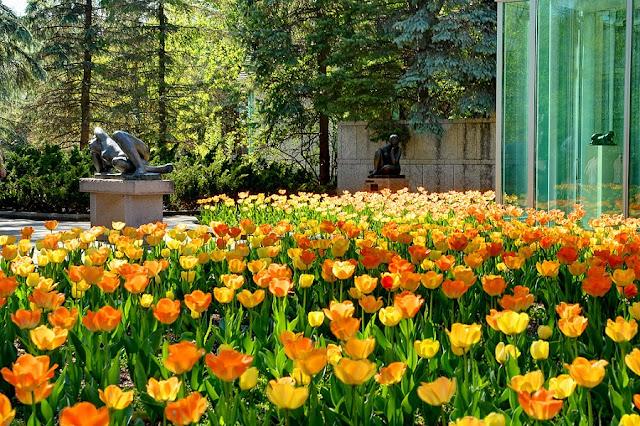 Primavera em Winnipeg