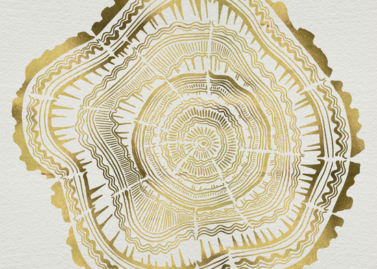 Gold Tree Rings Cat Coquillette