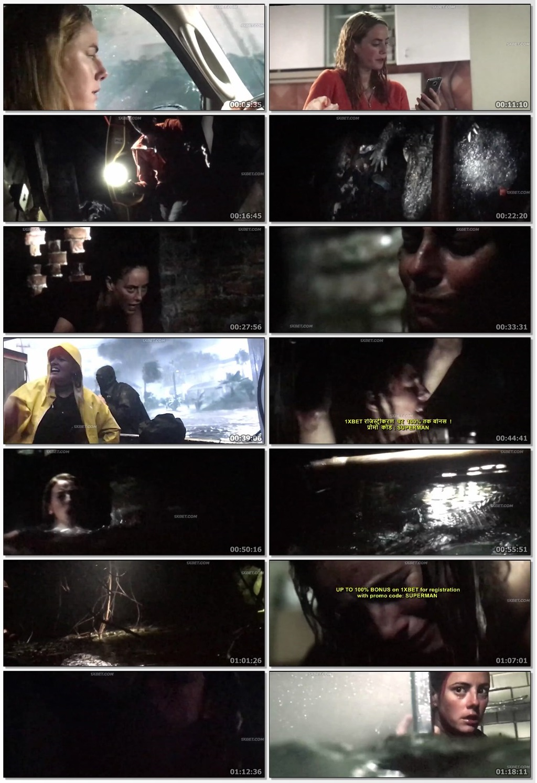 Screen Shot Of Crawl 2019 Full Movie Download Free Watch Online 300MB
