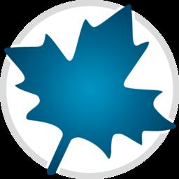 Maplesoft Maple 2019.2 Full version