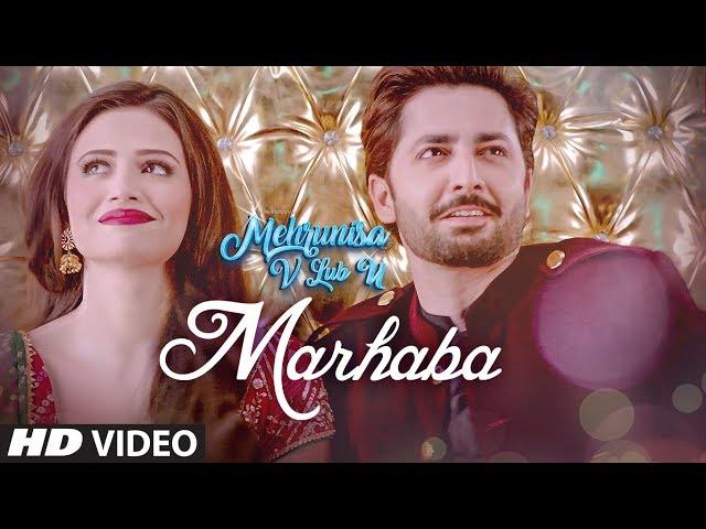Mehrunisa V Lub U Full Movie Watch Online In HD