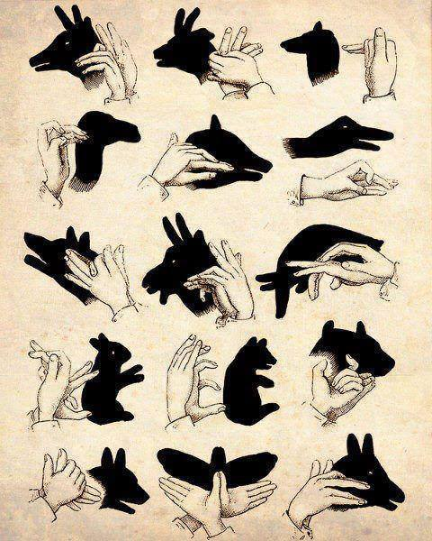 how-to-make-shadow-in-shape-of-animals-with-hands