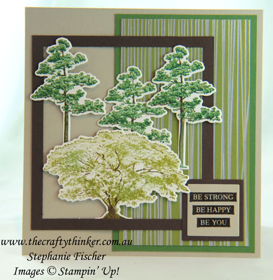 #thecraftythinker  #stampinup  #cardmaking  #sneakpeek, Rooted in Nature, Masculine Card, Stampin' Dreams, Sweet Soiree, Stampin' Up Australia Demonstrator, Stephanie Fischer, Sydney NSW