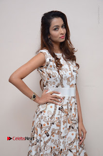 Telugu Actress Reshmi Thakur in Long Dress at Plus One ( 1) Audio Launch  0064.jpg