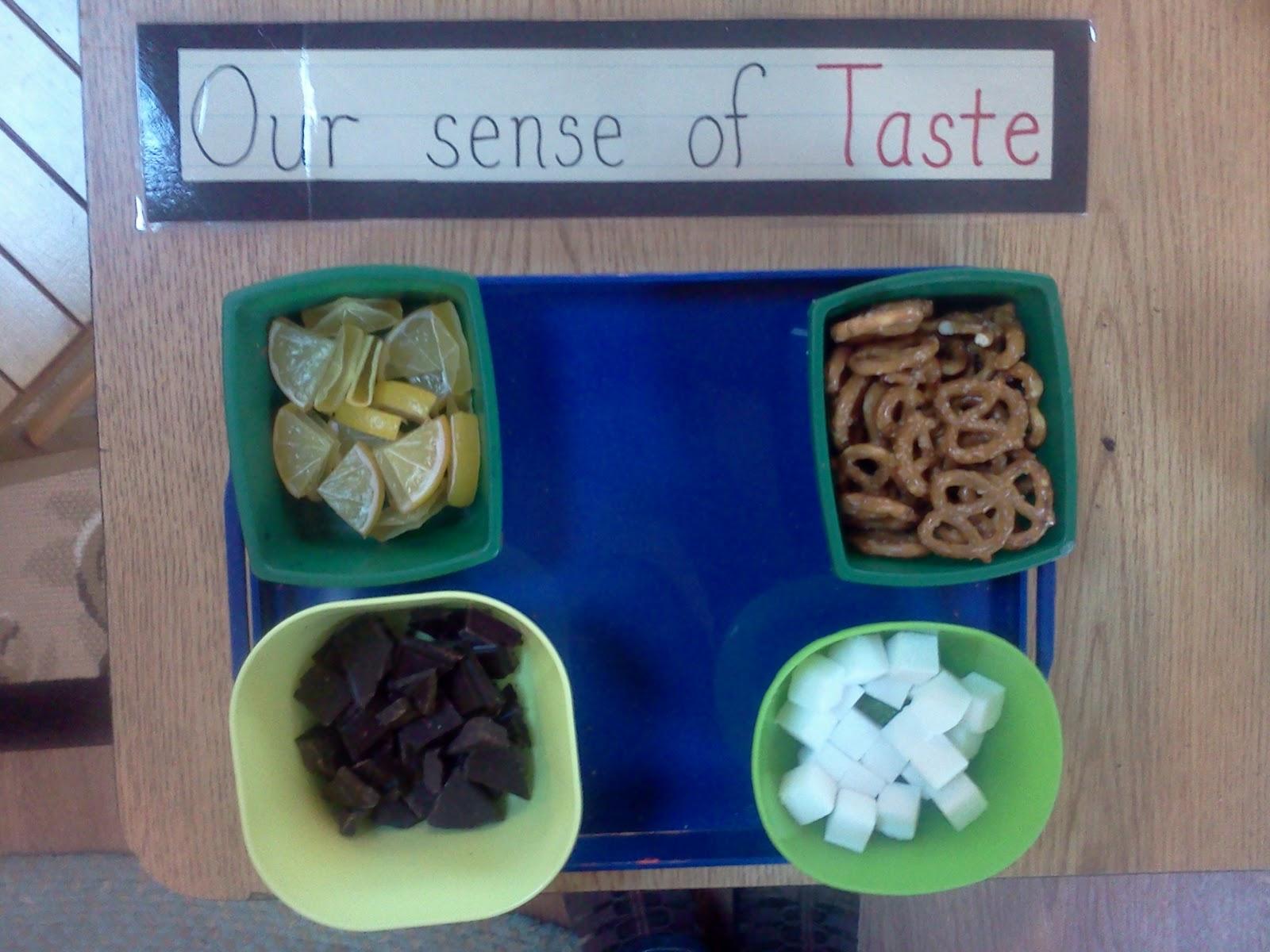 Sense Of Taste For Kids Worksheet We Explored Our Sense Of Taste Images