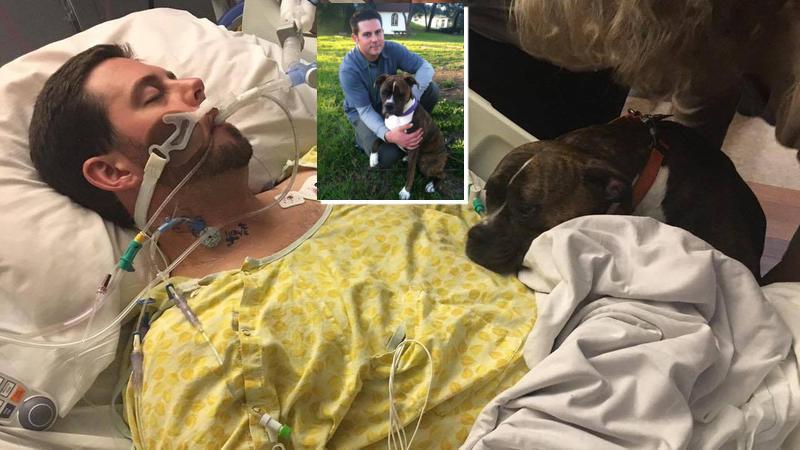 Συγκινητικό βίντεο: Σκύλος λέει το τελευταίο αντίο στον αγαπημένο του ιδιοκτήτη...