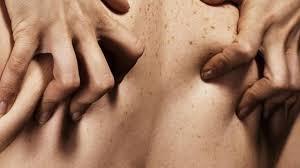 Jamu Obat Kuat Oles Pria dan Fungsi Utamanya