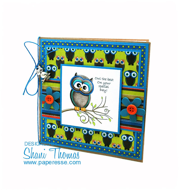 'Owl the best on your special day' Birthday card, by Paperesse.