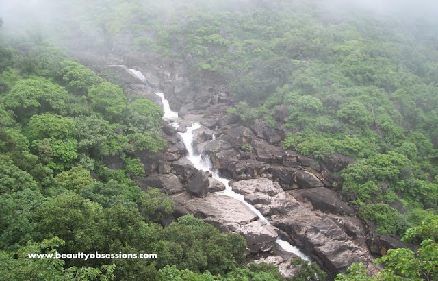 Mt. Abu , An Oasis In The Desert - My Memorable Journey ...
