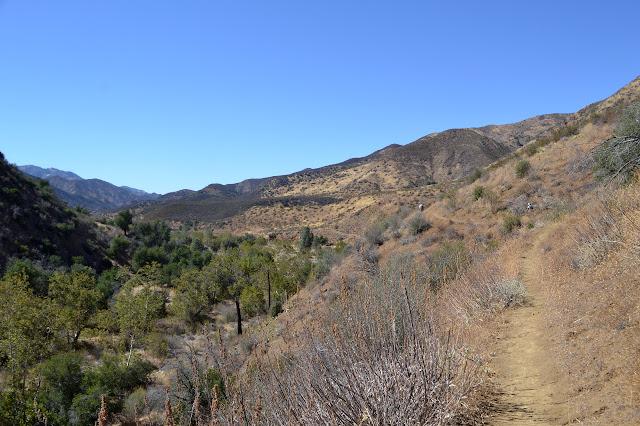 trail along the edge