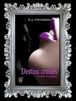 http://unpeudelecture.blogspot.com/2018/07/destins-croises-1-daj-orchidea.html