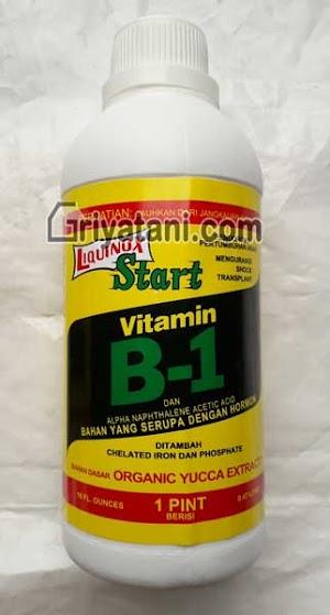 Liquinox Start Vitamin B1