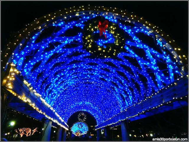 Luces de Navidad en el Columbus Park de Boston