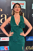 Laxmi Rai in a Deep neck Beautiful Green Gown Cute Actress Laxmi Rai ~  026.JPG