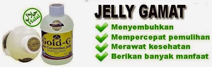 Jelly Gamat Bio Gold Atasi Obesitas Anak