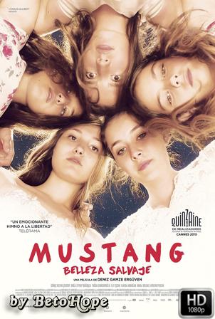 Mustang: Belleza Salvaje [2015] [Latino-Turco] HD 1080P [Google Drive] GloboTV