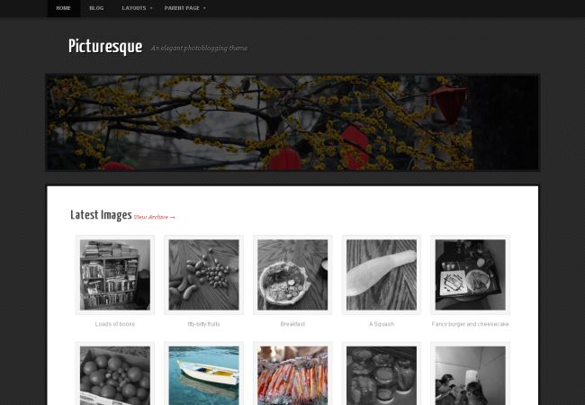 Photo gallery wordpress themes 2013 seo free download for Photo gallery html template free download