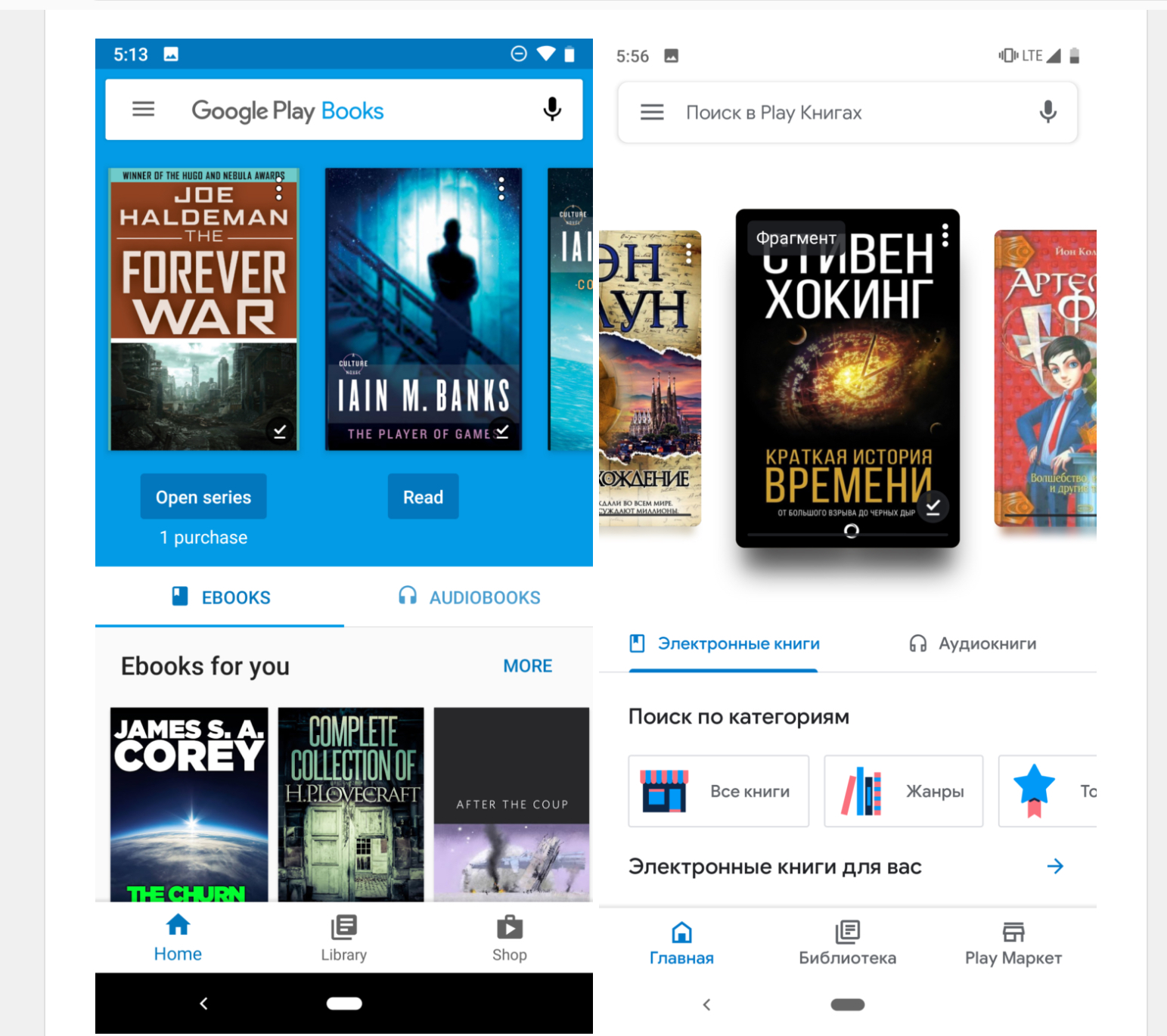 Google Play Books Ebook