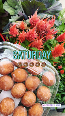 Donut holes and plants photo