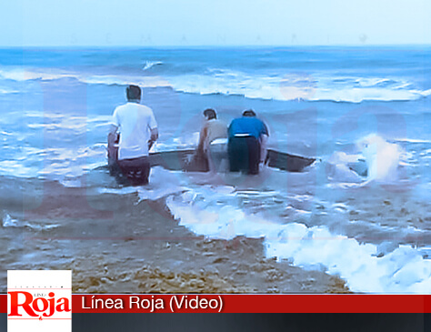 Salvan de la muerte a un cetáceo que varó en la costa de Playa del Carmen