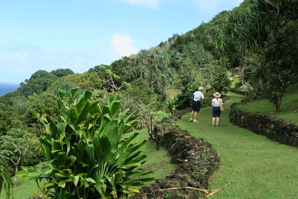 A guide to northeastern gardening national tropical - National tropical botanical garden ...