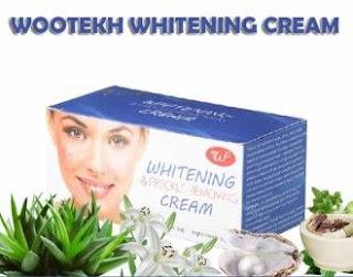 Merk Cream Untuk Memutihkan Wajah Yang Bagus Dan Aman