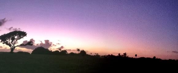 Sonnenuntergang in Flamingo