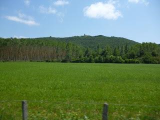 Zonas de cultivo