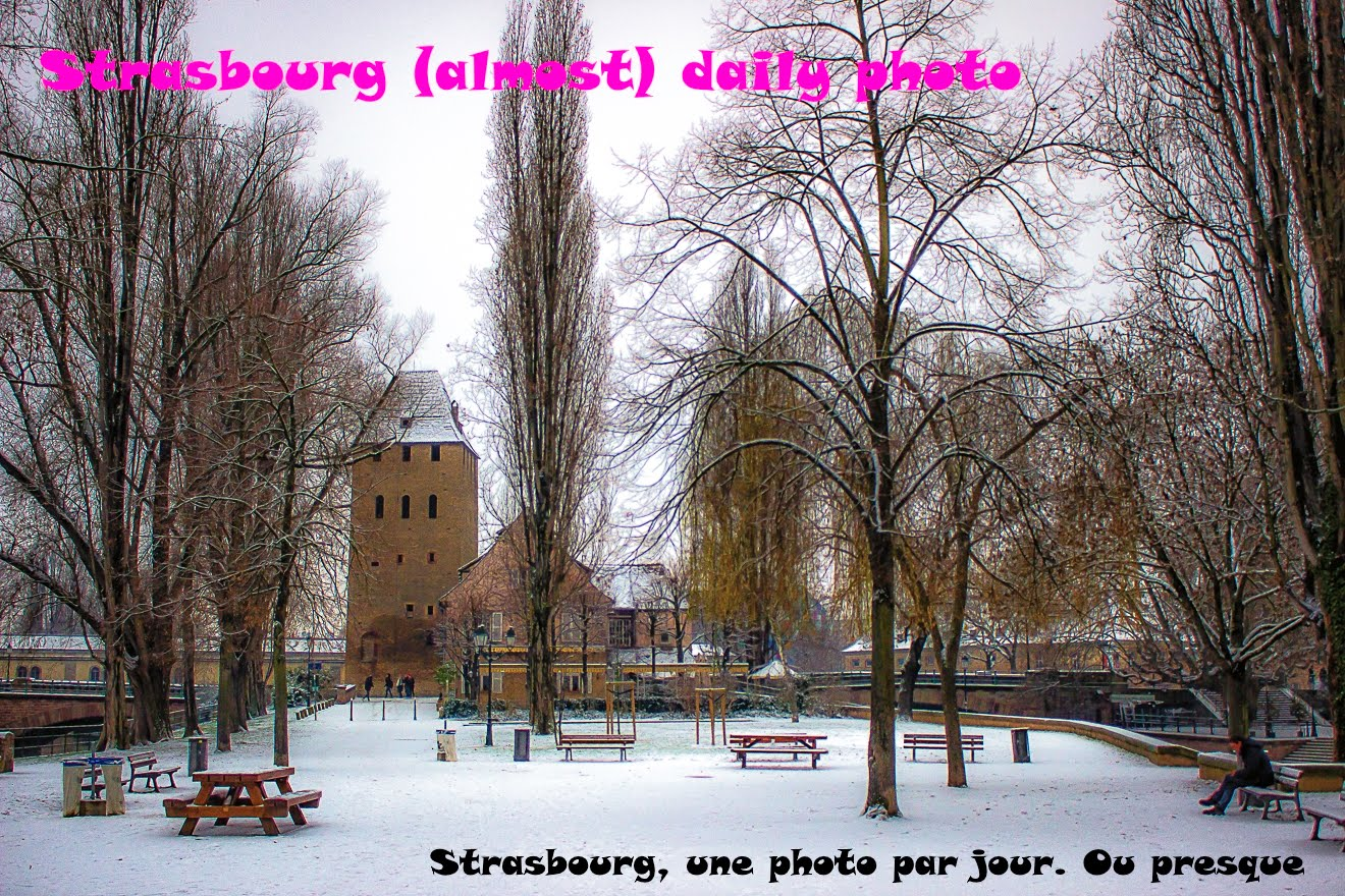 Strasbourg (almost) Daily Photo