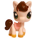 Littlest Pet Shop Gift Set Horse (#584) Pet