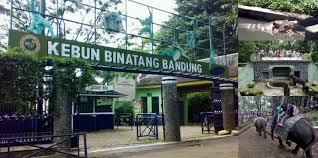 Tempat Wisata Di Bandung, Kebon Binatang