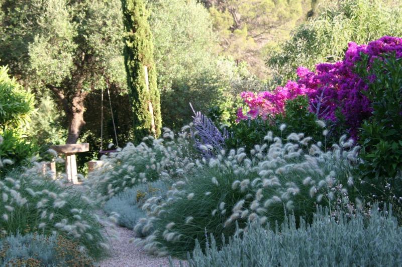 el jard n mediterr neo ecoeficiente guia de jardin
