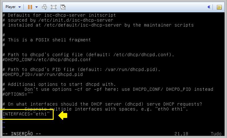 configurando interface lan dhcp